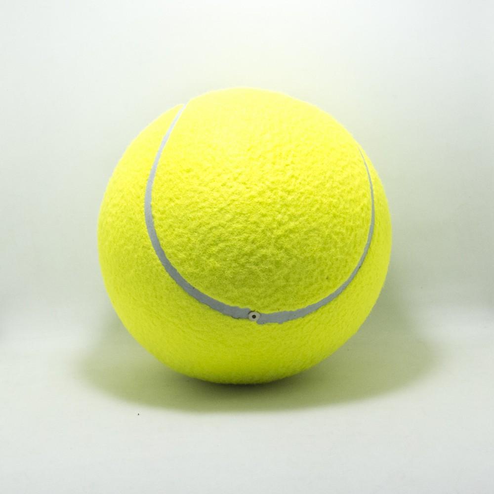 Pelota de Tennis Grande